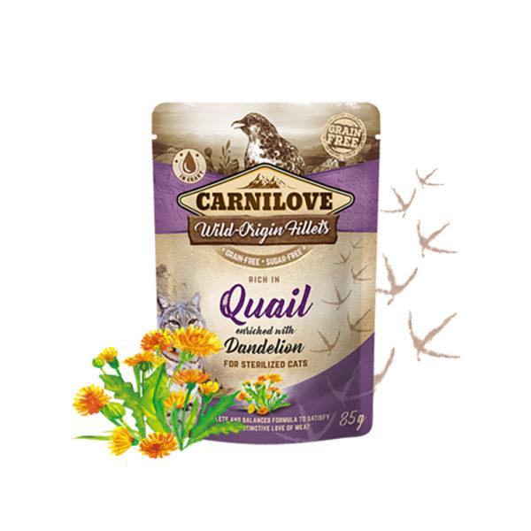 Carnilove quail with dandelion